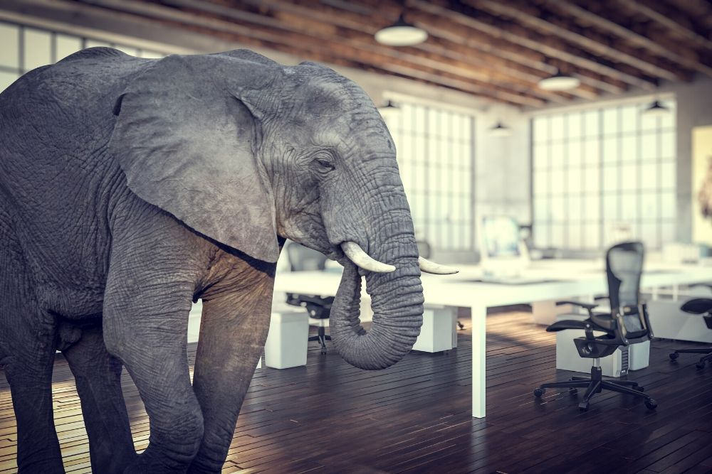 Underpayment Claims: The Elephant in the Room – Payroll Setup